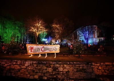 Bishop Lucey Park all lit up for Christmas