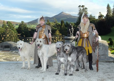 Celtic Warriors with Irish Wolfhounds