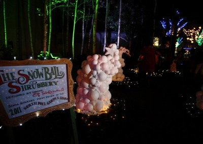 The Snowball Shrubbery