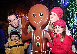 Cork Christmas Festive Lighting Installation 2011